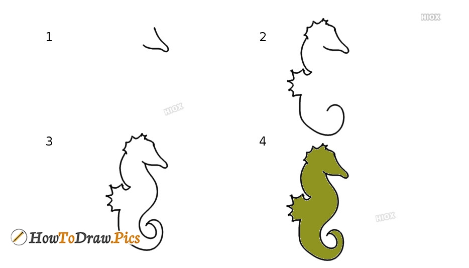 Animal Outline Drawing | How To Draw Seahorse