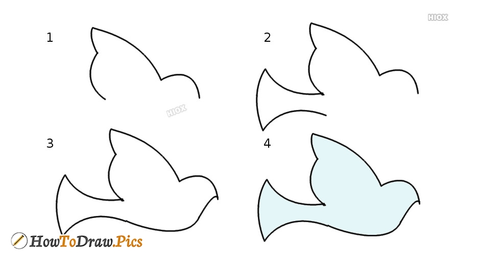 Bird Outline Simple Drawing For Kids