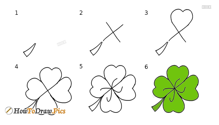 How To Draw Clover Step by Step Pictures