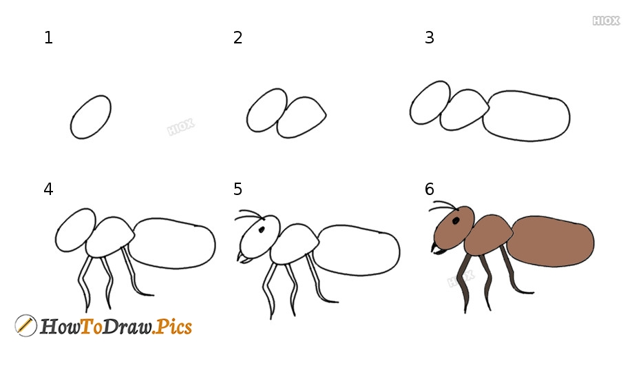 how to draw a ant howtodraw pics