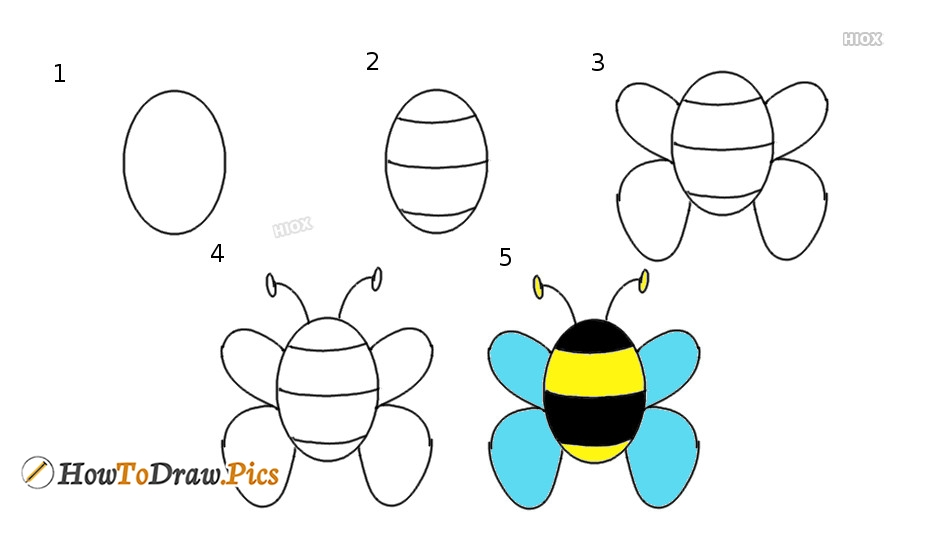 How To Draw Bee Pictures Bee Step By Step Drawing Lessons