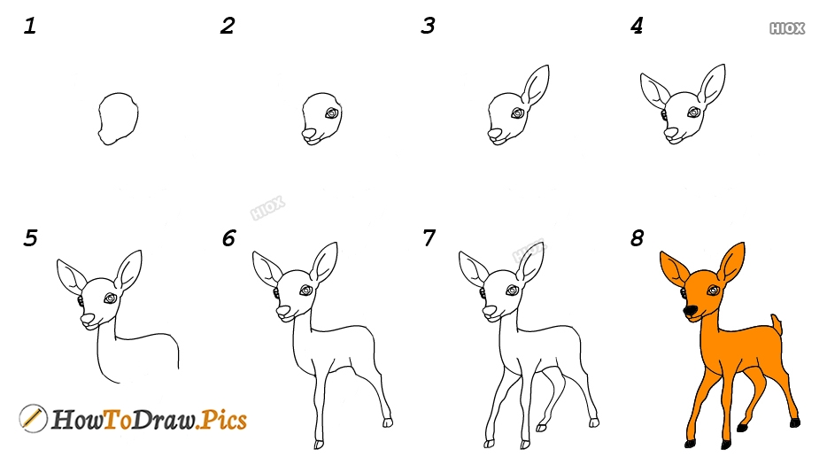 How To Draw Deer Step By Step Images