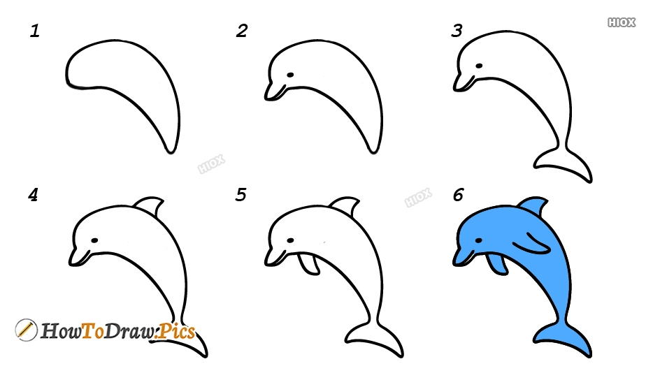 How To Draw A Dolphin Step By Step Realistic