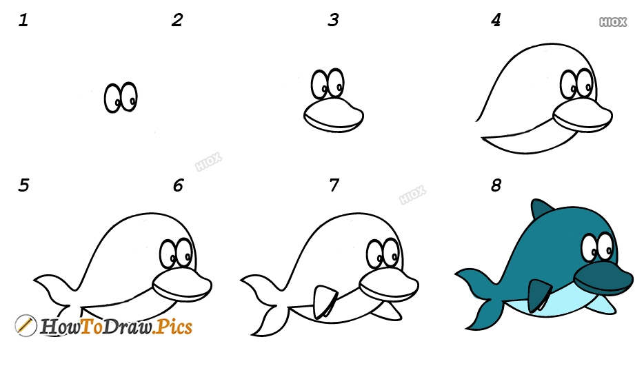 How To Draw A Dolphin Face