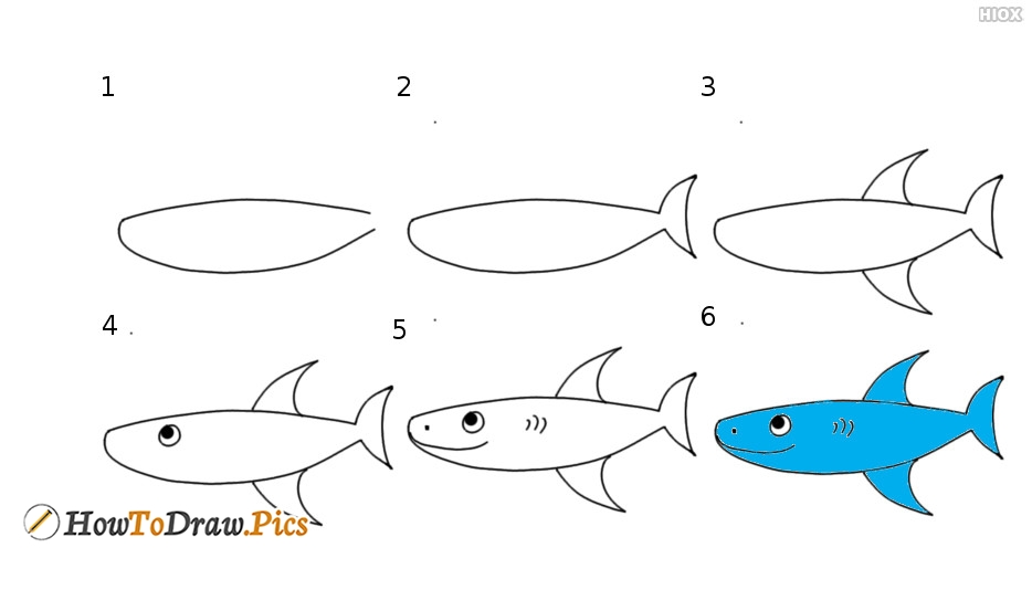 How To Draw A Fish Step By Step?