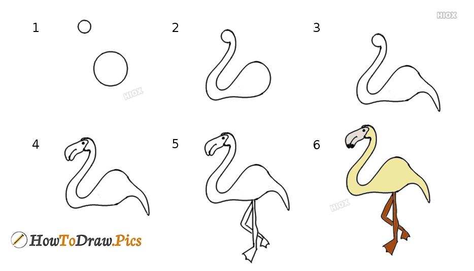 How To Draw A Flamingo | Draw Step By Step