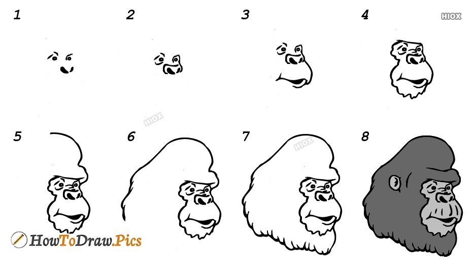 How To Draw Gorilla Pictures, Images