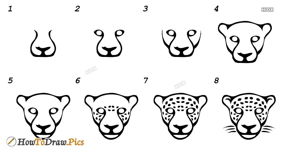 How To Draw A Jaguar