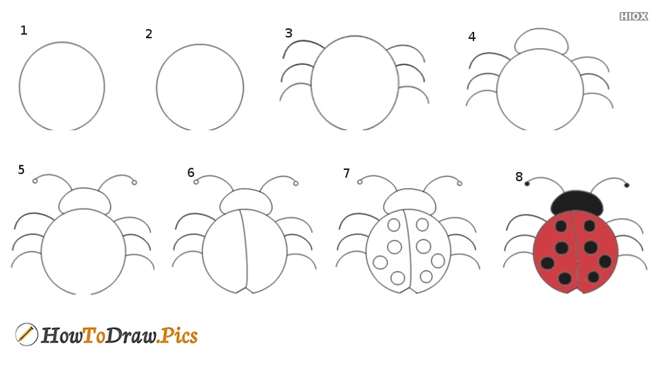 How To Draw A Lady Bug?
