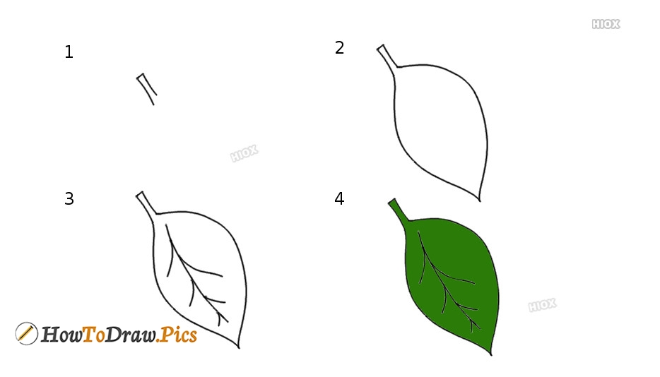 How To Draw Leaves Pictures