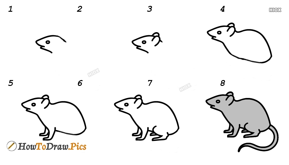 How To Draw A Mouse