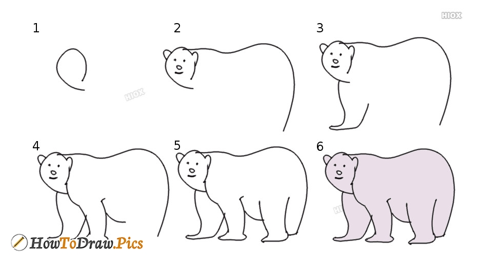 How To Draw Polar Bear Step by Step Pictures