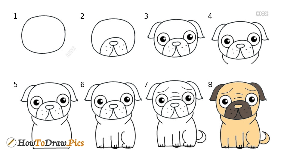 How To Draw Dog Pictures | Dog Step By Step Drawing Lessons