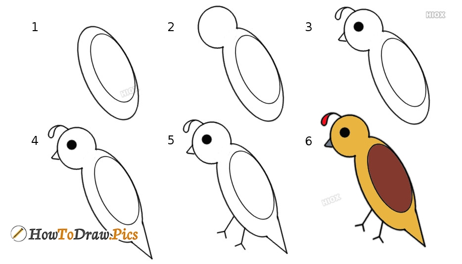 How To Draw Birds Step by Step Pictures