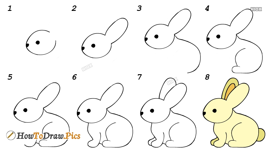 How To Draw Rabbit Step by Step Pictures