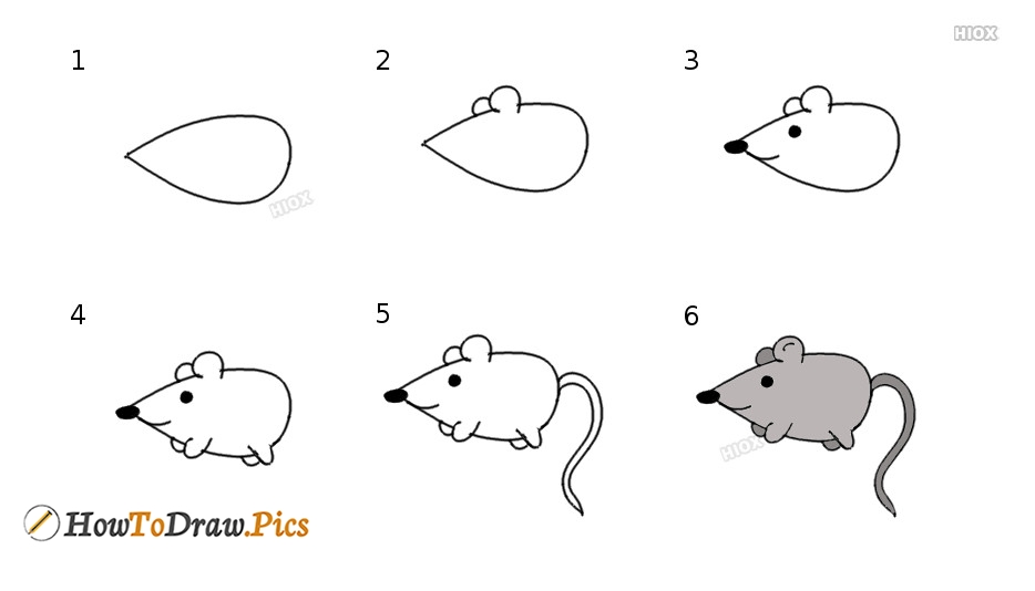 How To Draw A Rat | Step By Step Tutorial