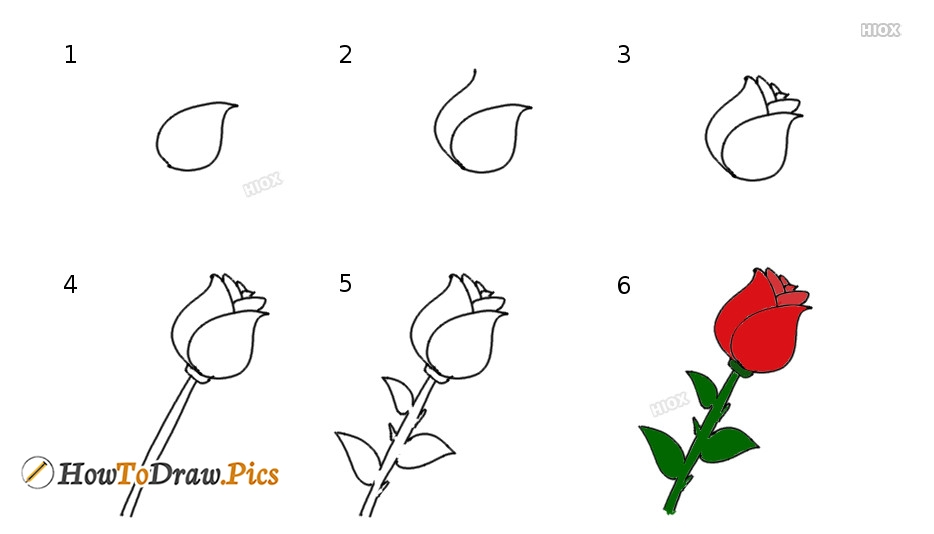 How To Draw Rose Pictures | Rose Step by Step Drawing Lessons