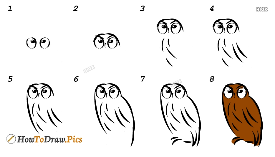 How To Draw A Saw Whet Owl