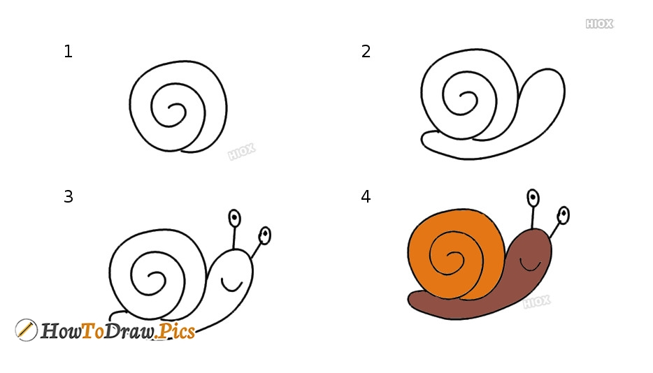 Easy Step By Step Pictures On How To Draw A Snail