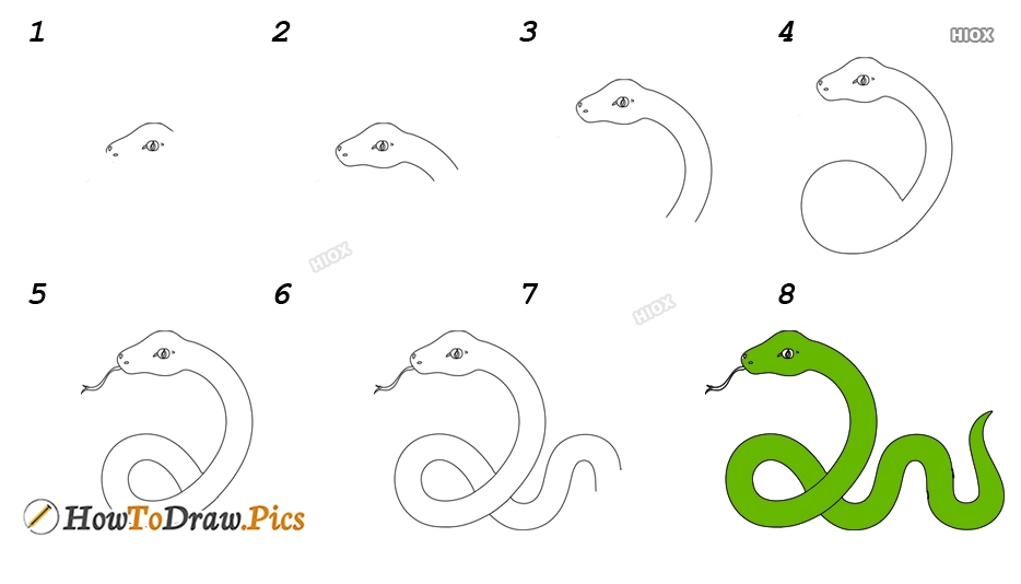 How To Draw A Snake Step By Step For Kids