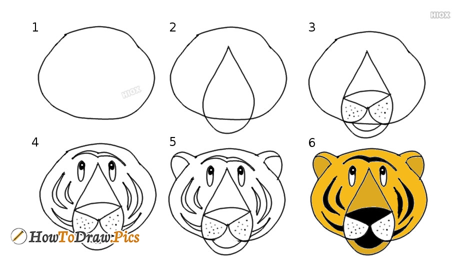 How To Draw A Tiger | Simple And Easy Steps