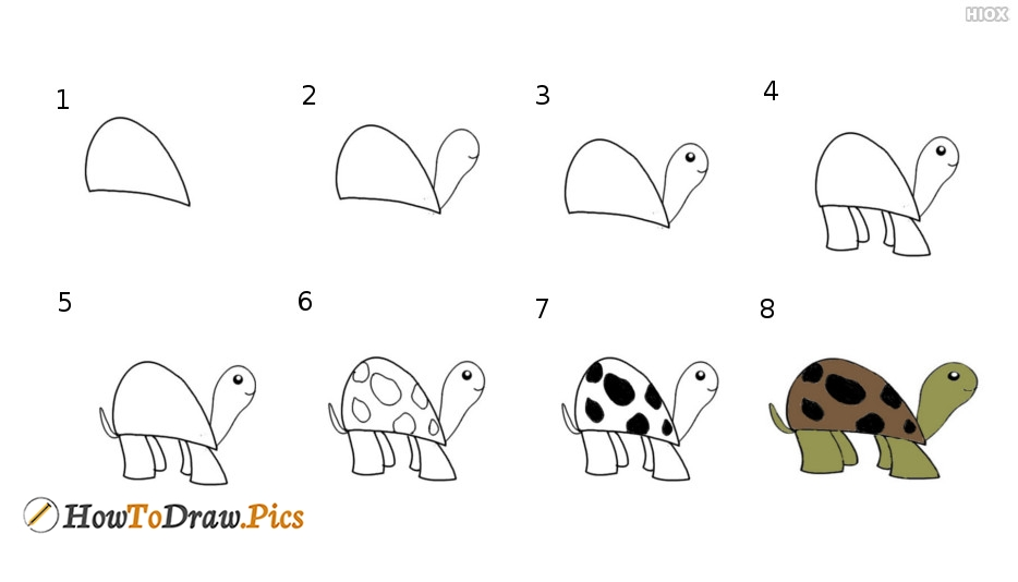 How To Draw A Tortoise Step By Step Easy?