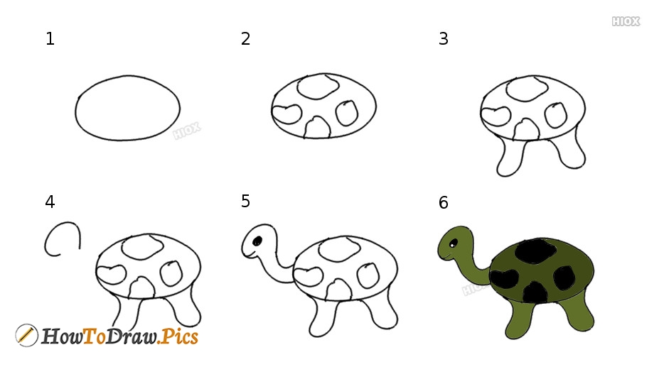 How To Draw Tortoise Step By Step Easy Images