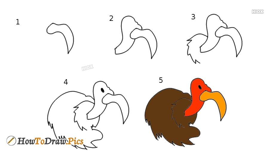 How To Draw A Vulture