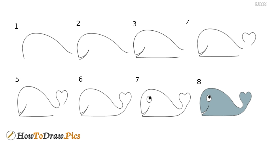 How to draw whale? Step by step drawing lesson with pictures