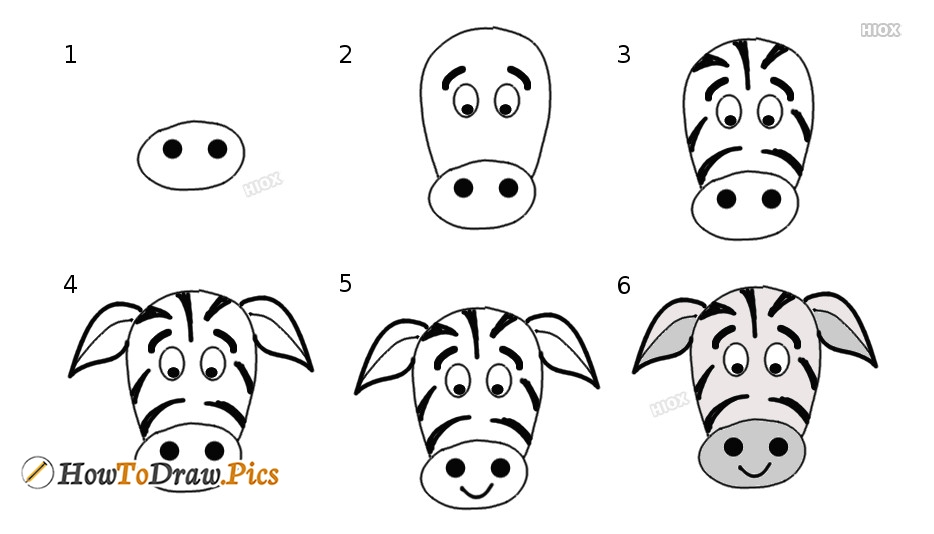 Zebra Drawing Images, Pictures