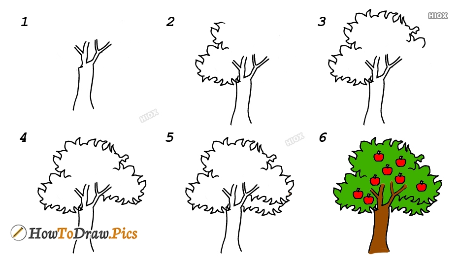 How To Draw An Apple Tree Step By Step Images