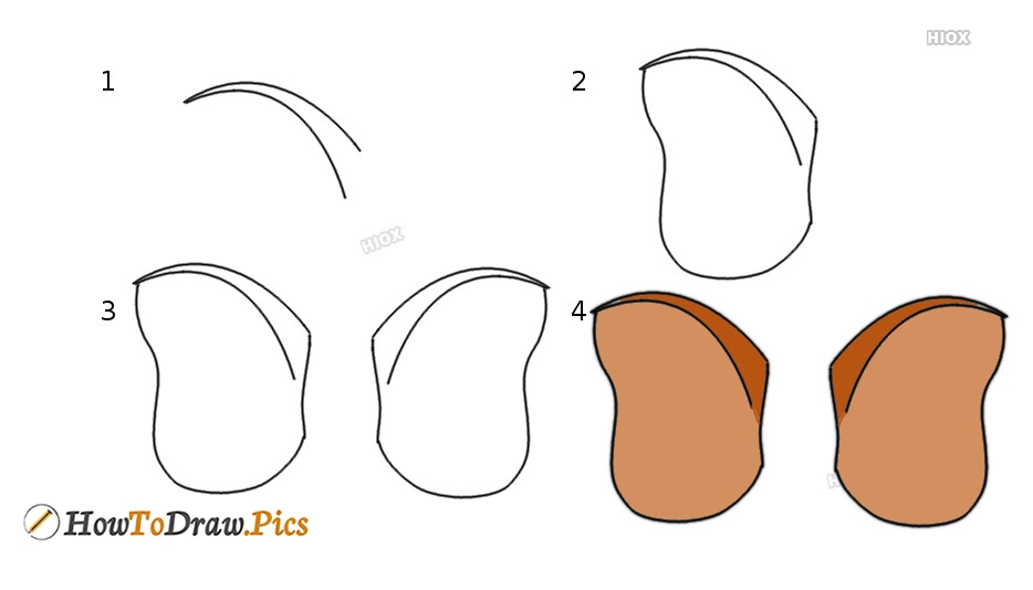 How To Draw An Elephant Ear