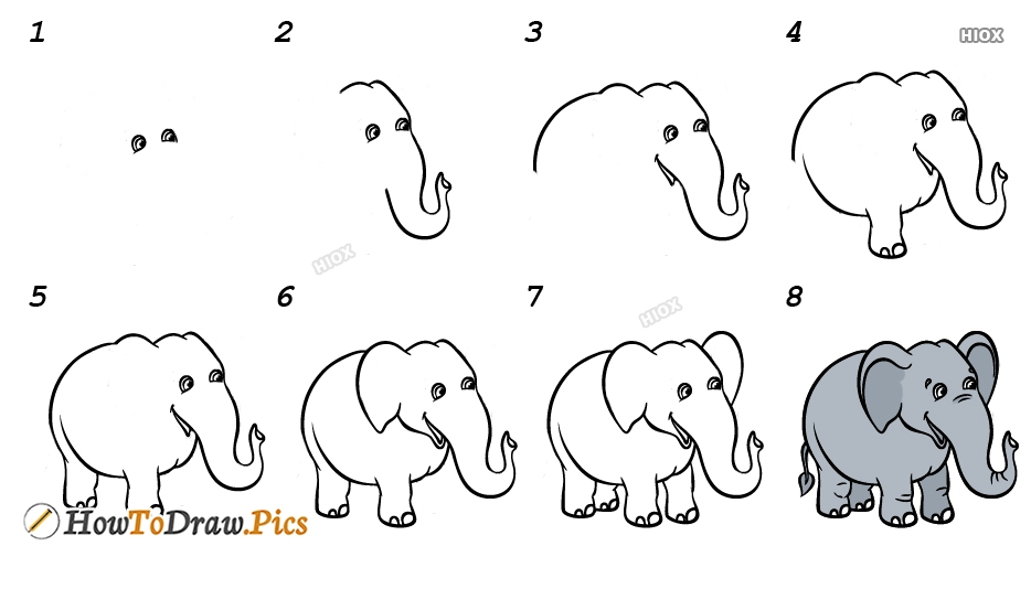 How To Draw An Elephant Step By Step For Beginners