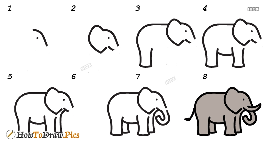 How To Draw Elephant Step by Step Pictures