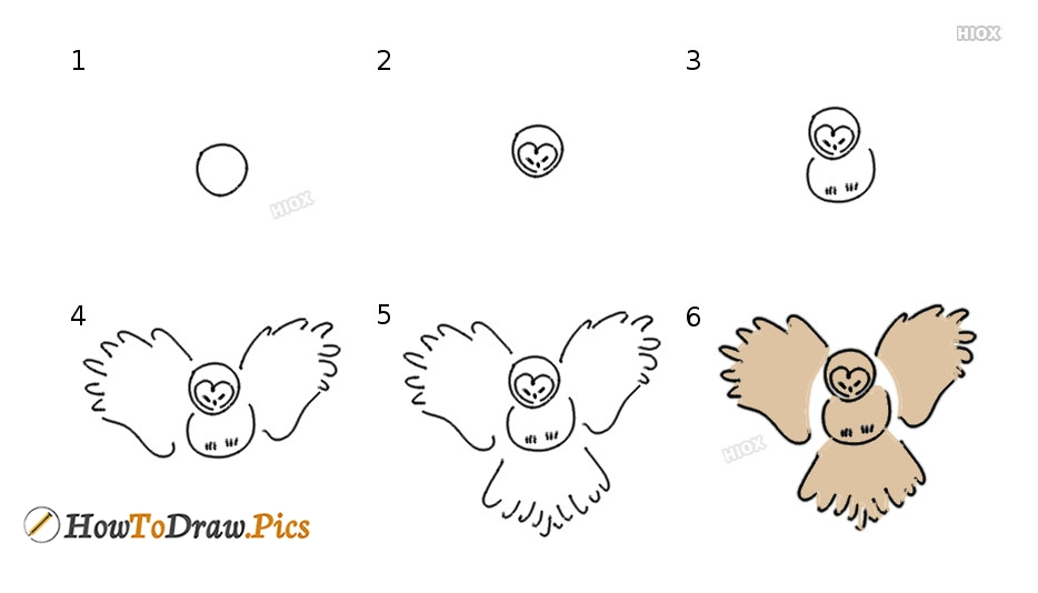 How To Draw An Owl Flying