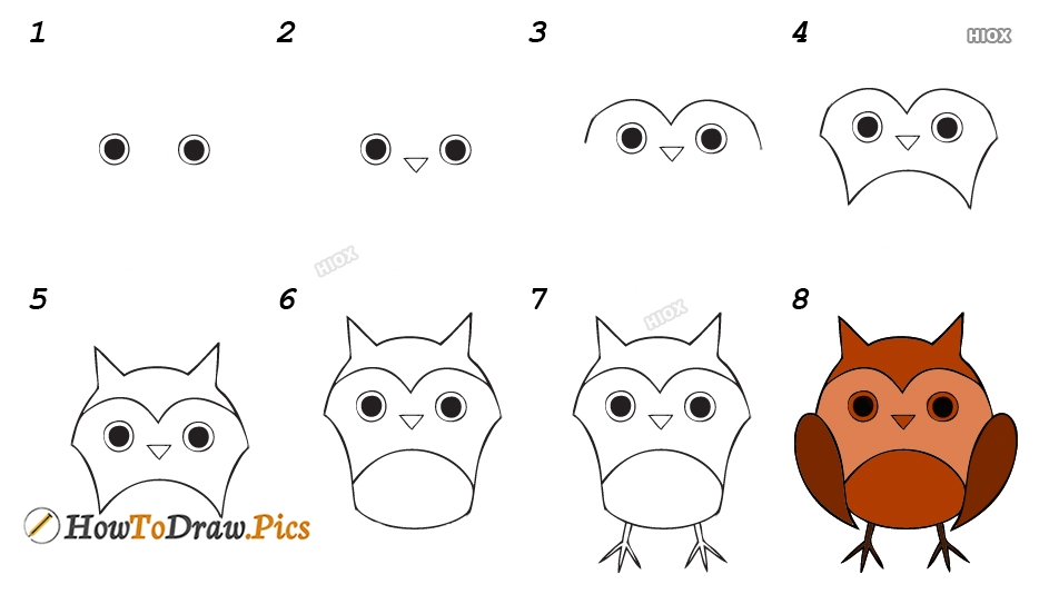 How To Draw An Owl Kids