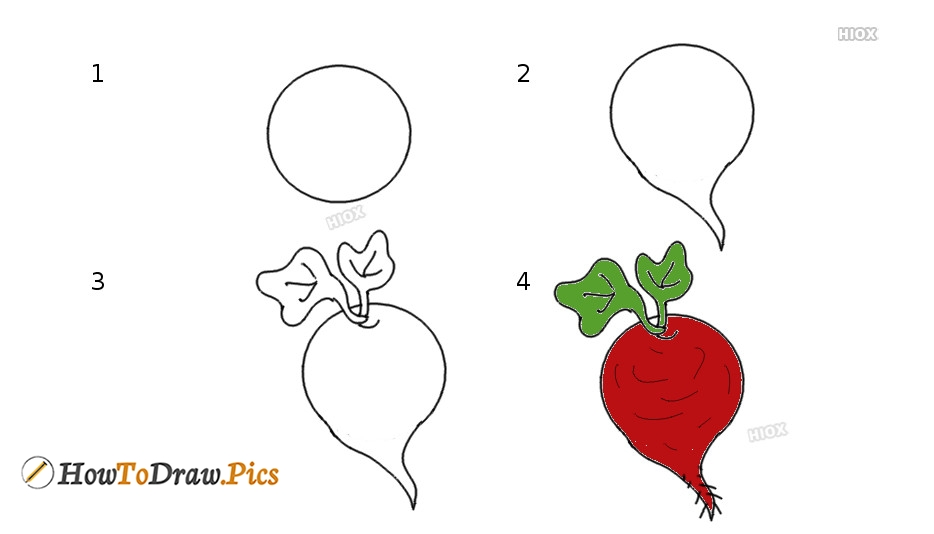 How To Draw Beetroot