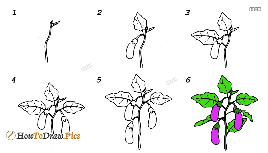 How To Draw Brinjal Tree