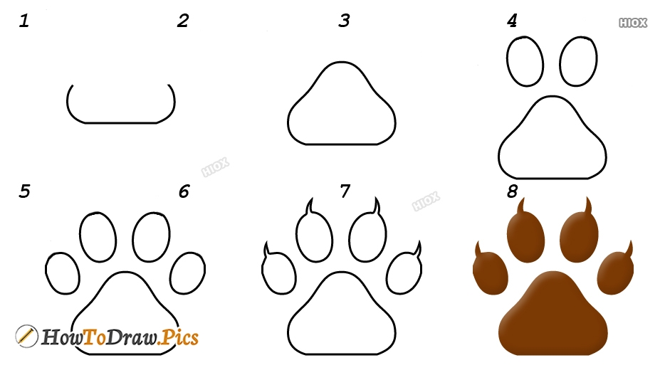 How To Draw Paws Step By Step Images