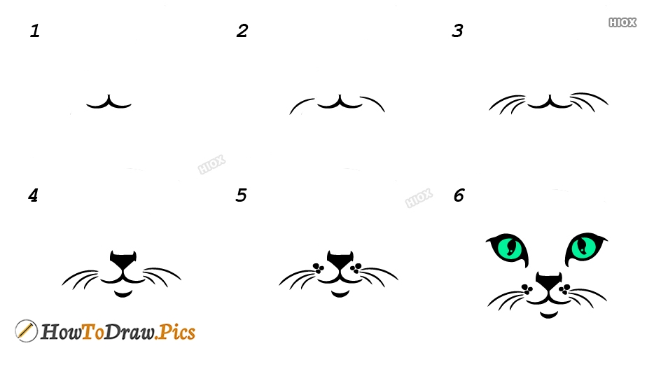 How To Draw Cat Whiskers