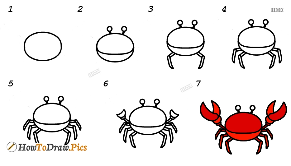 How To Draw Crab Step By Step Images, Pictures