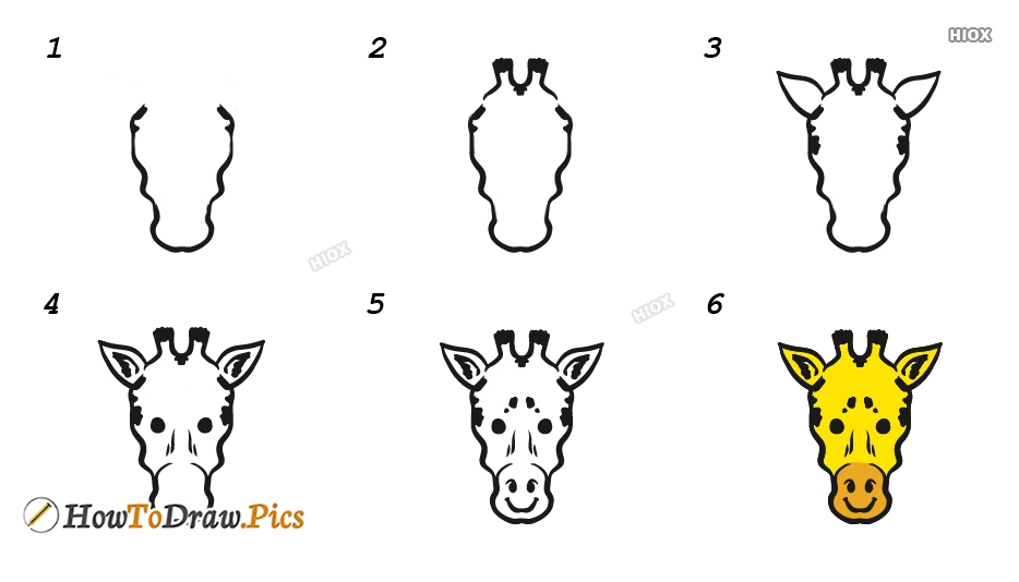 How To Draw Giraffe Face