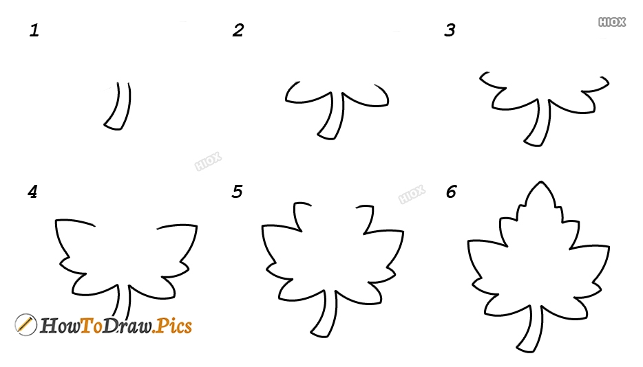 How To Draw Grapes Leaf Howtodraw Pics