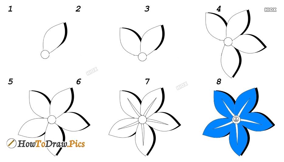 How To Draw Jasmine Flower For Kids