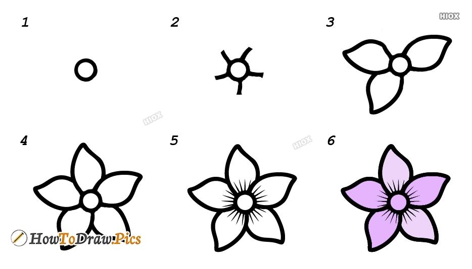 How To Draw Jasmine Step By Step