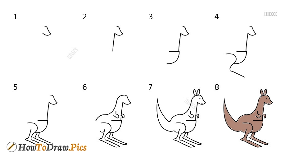 How To Draw A Kangaroo | Step By Step Drawing