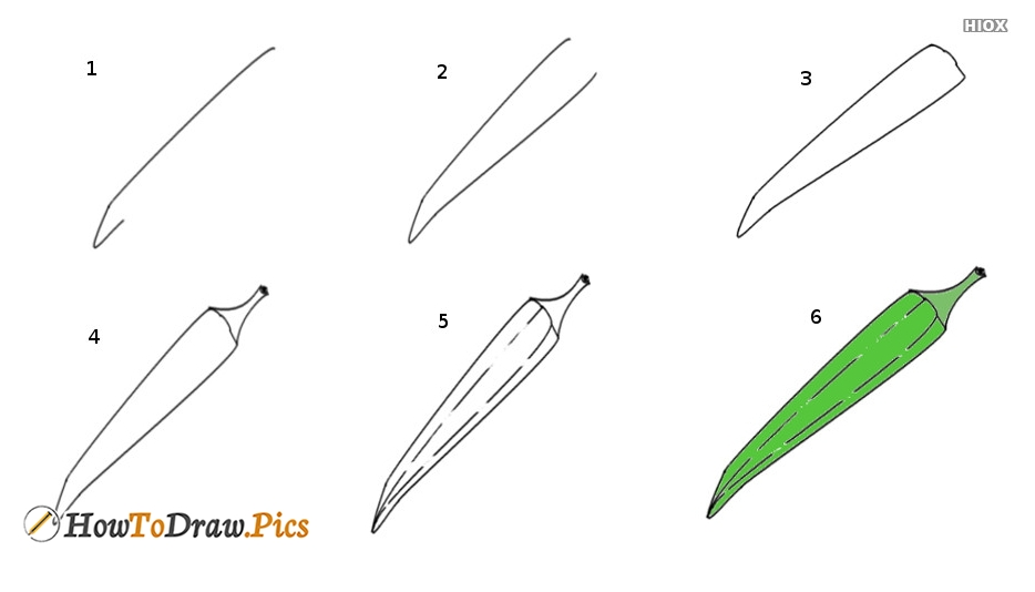 How To Draw Lady Finger Step by Step Pictures