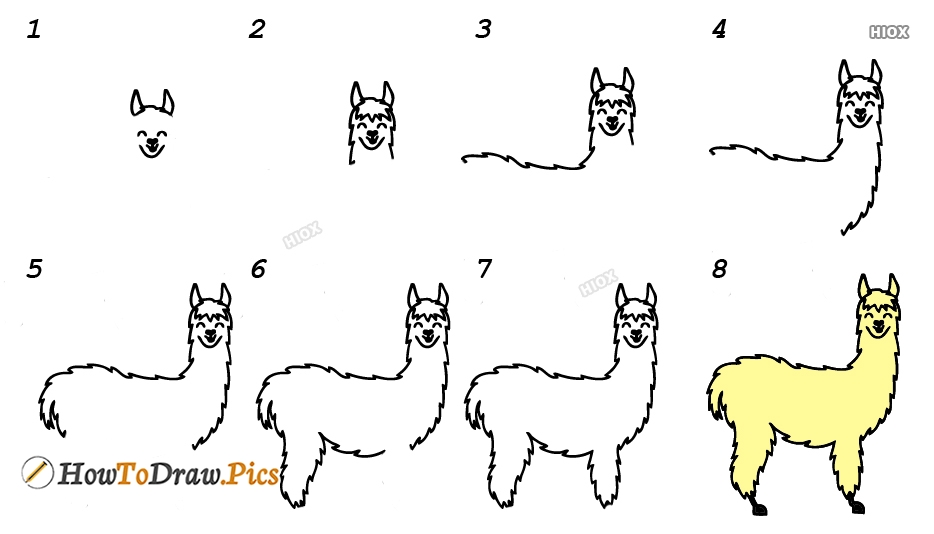 How To Draw Llama Easy