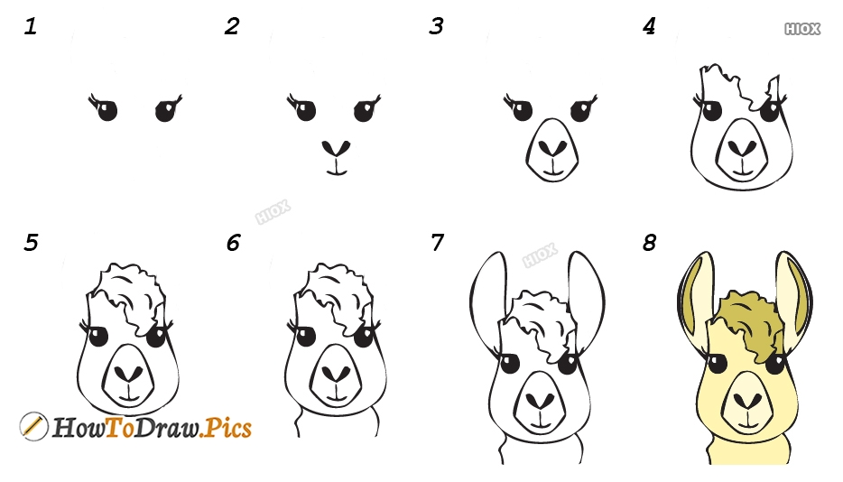 How To Draw Llama Fortnite Easy