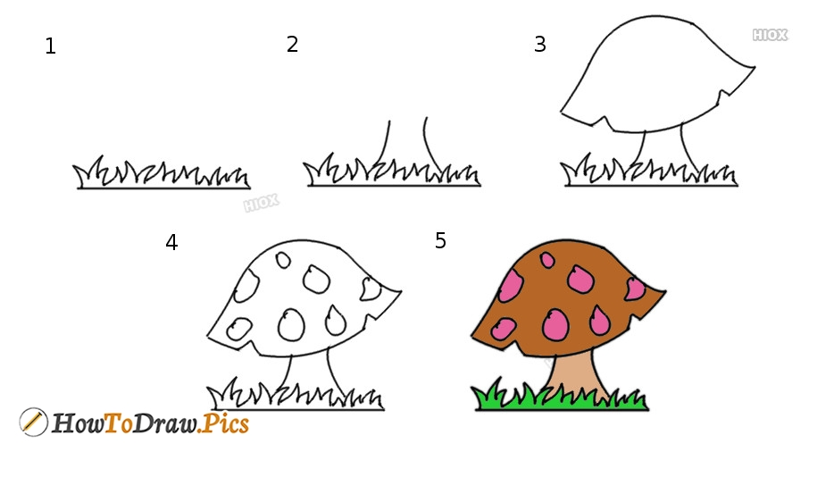 How To Draw Mushroom Step By Step